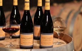 Vins millésimes de Bourgogne