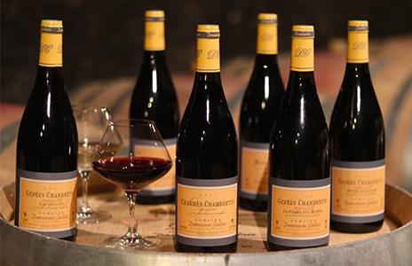 Les vins et millésimes du domaine à Gevrey-Chambertin en Bourgogne